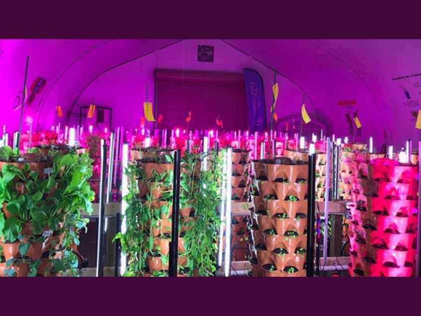 Regina Food Bank Light Deprived Sprung Greenhouse