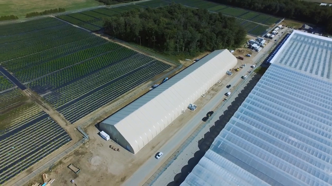 weed md facility